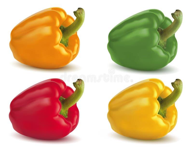 Bell peppers on white. Illustration vector illustration