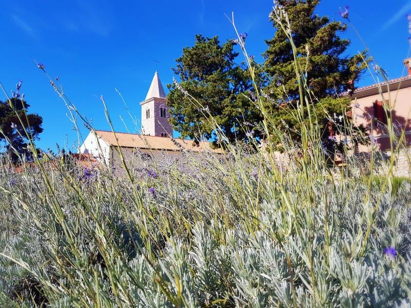 Bell Tower of The Church of St Anselm, Nin, Croatia stock photos