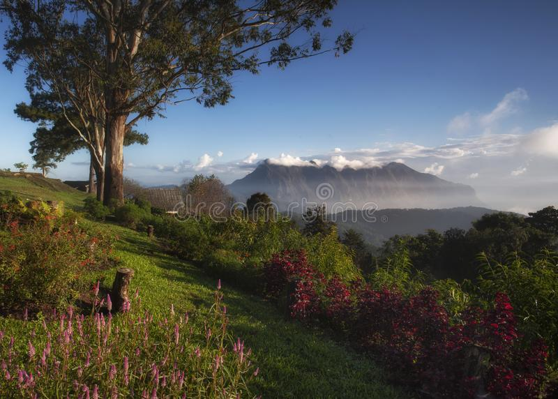 Bella alba del fondo della natura a Doi Luang Chiangdao in Chiangmai immagine stock