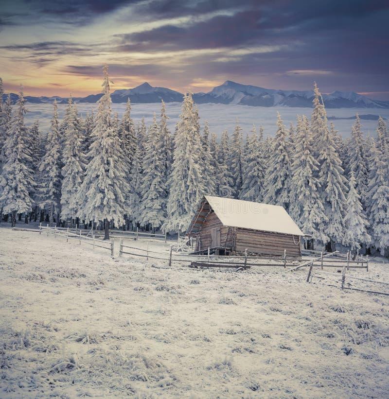Bella alba di inverno nelle montagne nebbiose fotografia stock libera da diritti