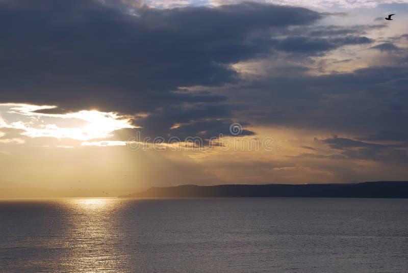 Bella alba ed uccelli fotografia stock