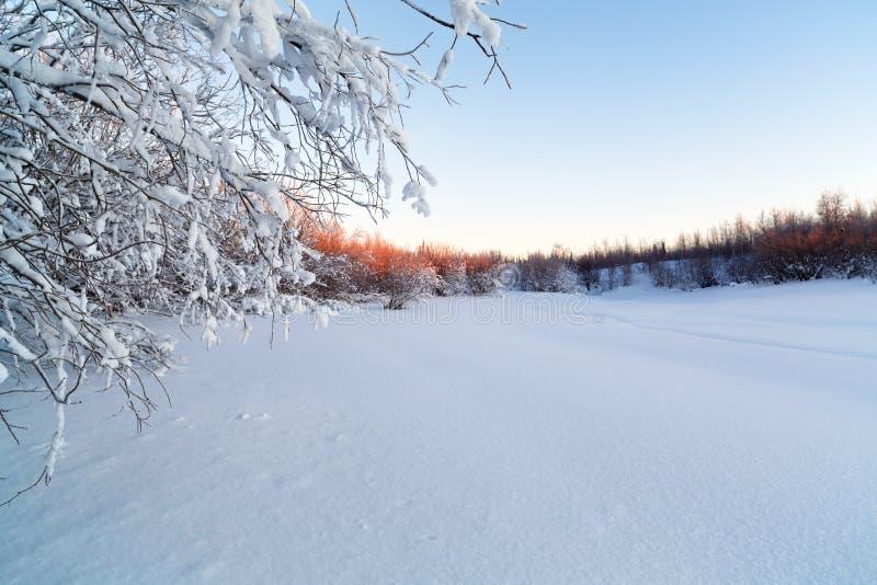 Bella alba gelida del paesaggio di mattina immagini stock