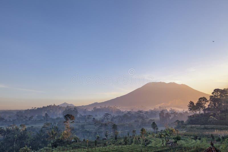 Bella alba sopra i terrazzi del riso di Jatiluwih in Bali, Indo immagini stock