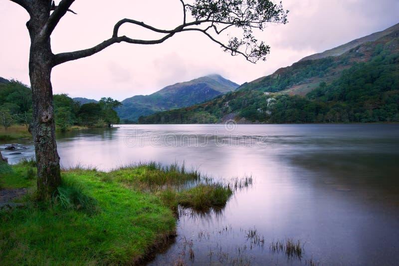 Bella alba sopra Llyn Gwynant in Snowdonia fotografie stock