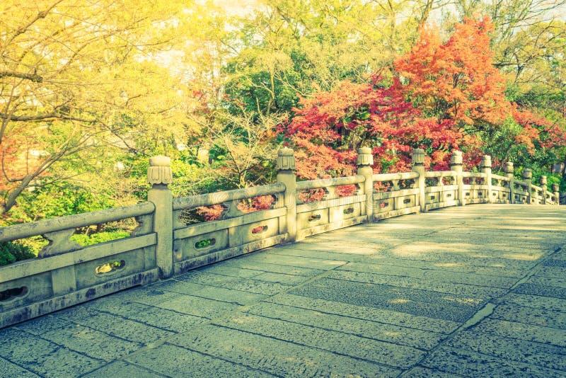 Bella architettura in tempio Kyoto, Giappone di Kiyomizu-dera fotografia stock