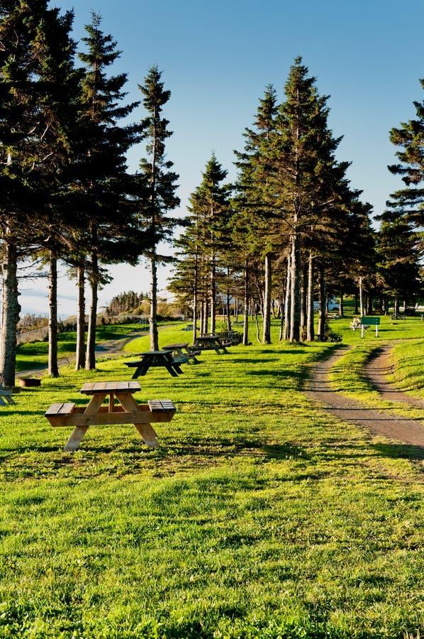 Bella area di riposo di un campground fotografia stock libera da diritti