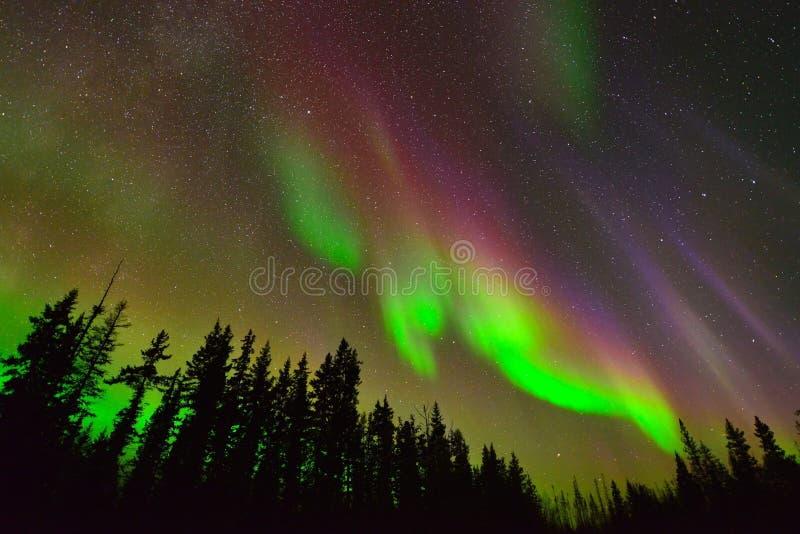 Bella aurora boreale fotografia stock