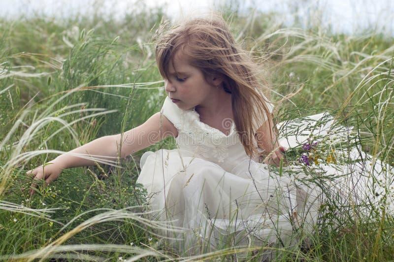 Bella bambina di Fairy-tale su un prato inglese immagine stock libera da diritti