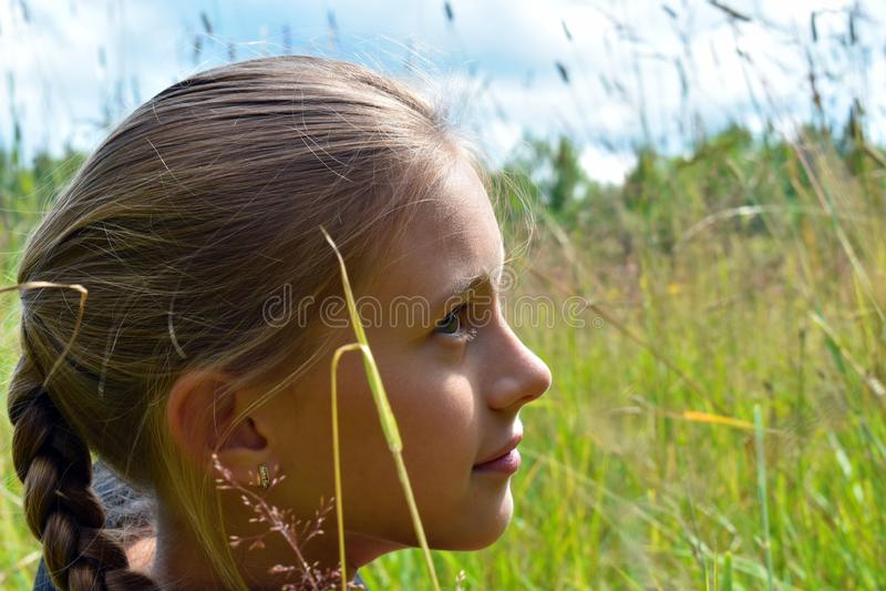 Bella bambina in un'erba verde su estate fotografia stock