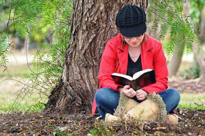 Bella bibbia della lettura della giovane donna sotto il grande albero immagine stock