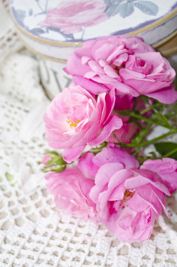 Bella carta floreale con amore per voi Rose delicate di rosa selvaggio con il contenitore di regalo immagine stock
