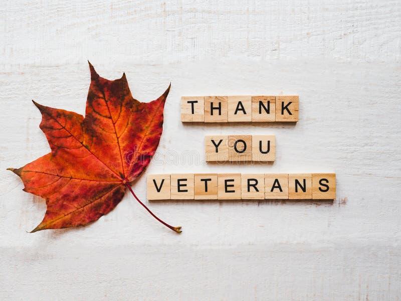Bella cartolina d'auguri sulla giornata dei veterani Vista superiore fotografie stock libere da diritti