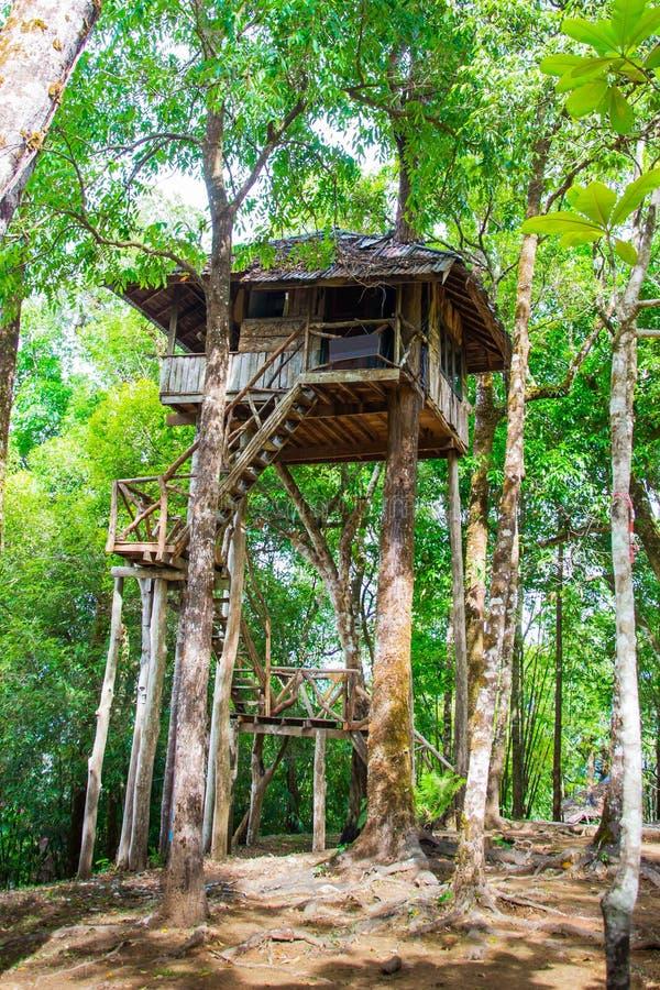 Bella casa sull'albero fatta a mano creativa immagini stock