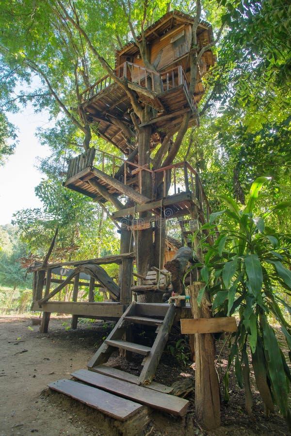 Bella casa sull'albero nella provincia di Chiang Mai fotografie stock