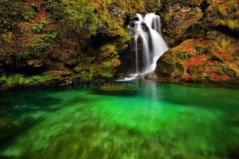 Bella cascata del paesaggio della Slovenia nella foresta e nel parco naturale fotografie stock
