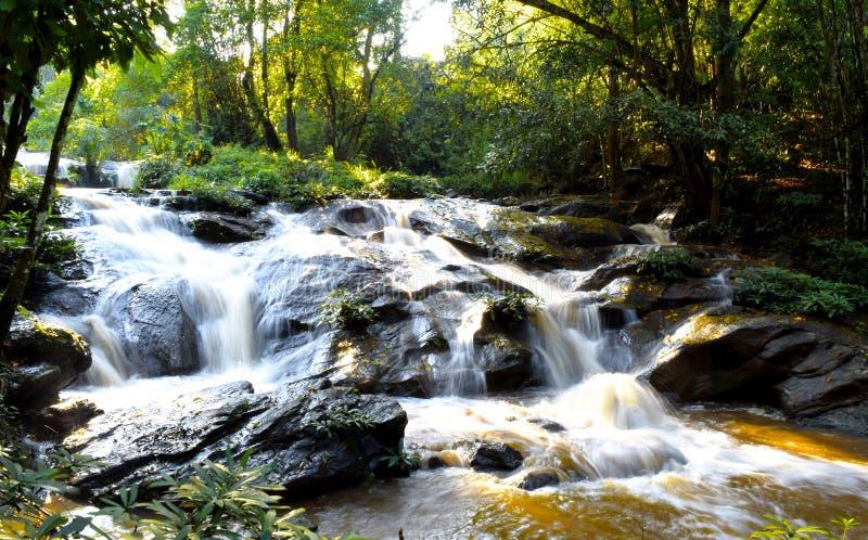 Bella cascata della natura in burrone Chiangmai, Tailandia fotografia stock