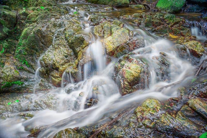 Bella cascata su un pendio di montagna in foresta profonda fotografia stock