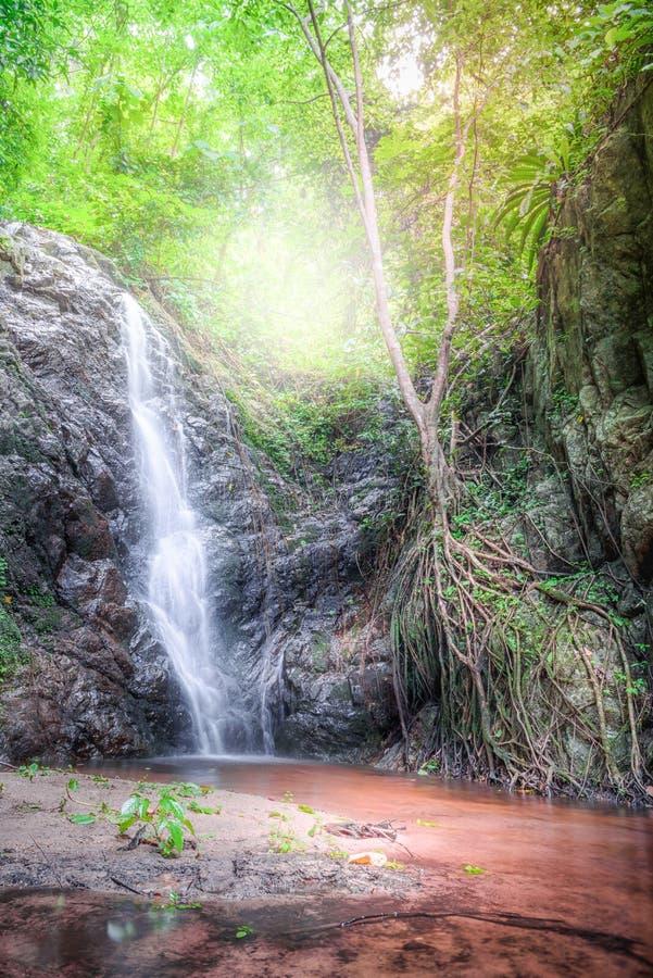 Bella cascata su un pendio di montagna in foresta profonda immagini stock