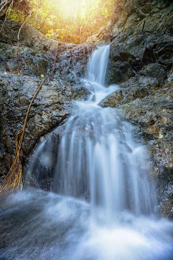 Bella cascata su un pendio di montagna in foresta profonda immagine stock libera da diritti