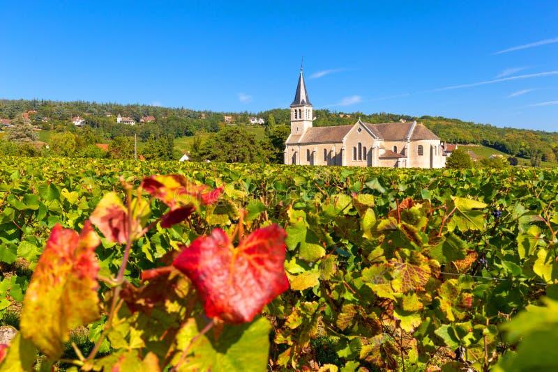 Bella chiesa di Givry, accoccolata nelle vigne di Borgogna, la Francia immagini stock libere da diritti
