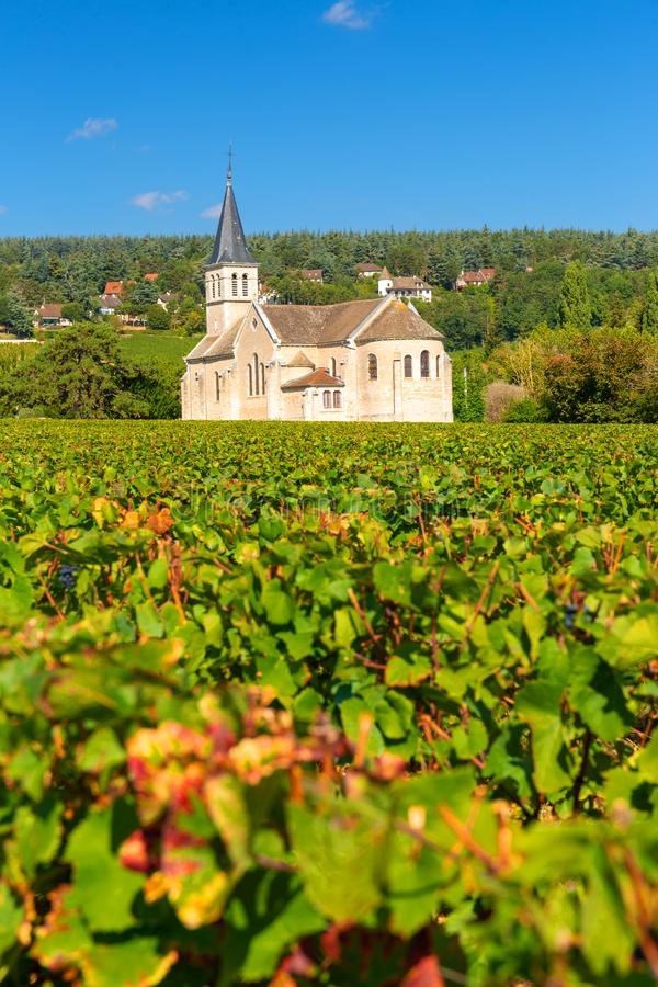 Bella chiesa di Givry, accoccolata nelle vigne di Borgogna, la Francia fotografia stock