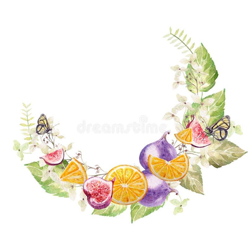 Bella corona dell'acquerello con l'ortensia, l'eucalyptus, i fichi e le arance illustrazione vettoriale