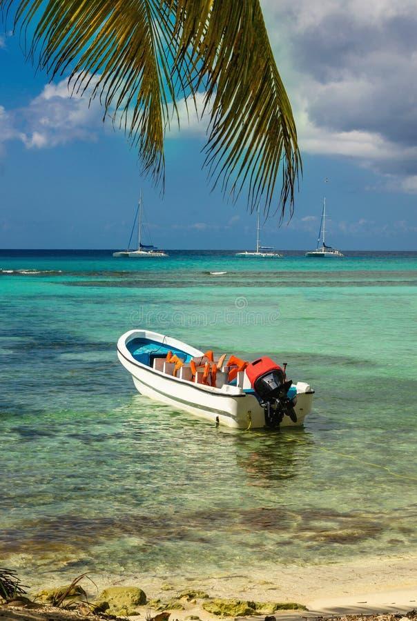 Bella costa caraibica esotica con il motoscafo bianco attraccato, Repubblica dominicana immagine stock libera da diritti