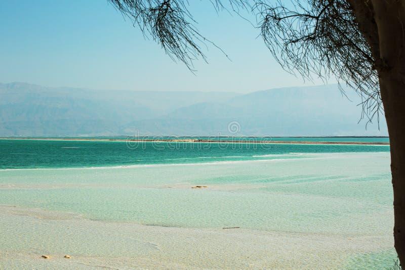 Bella costa del mar Morto immagini stock libere da diritti