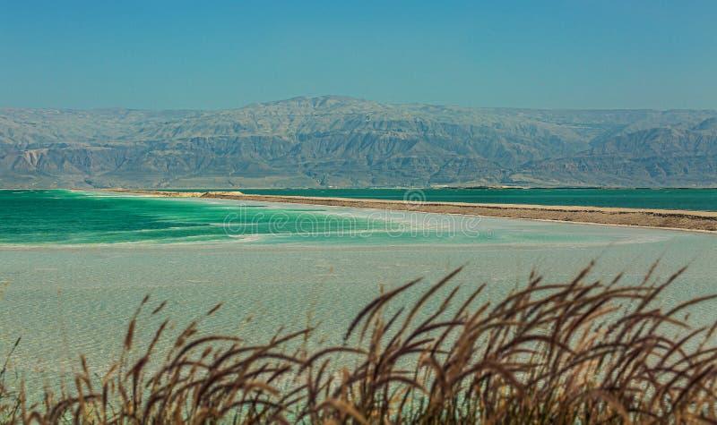 Bella costa del mar Morto fotografie stock