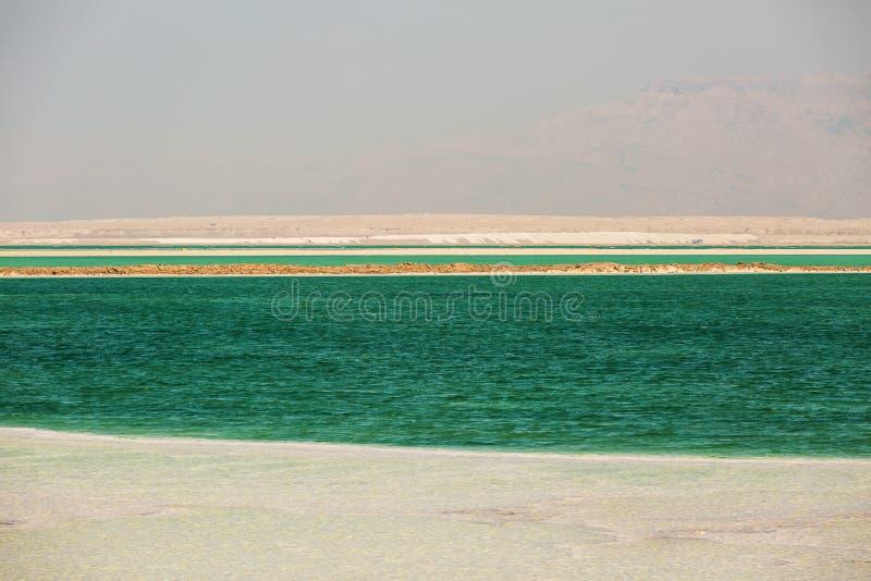 Bella costa del mar Morto fotografie stock libere da diritti