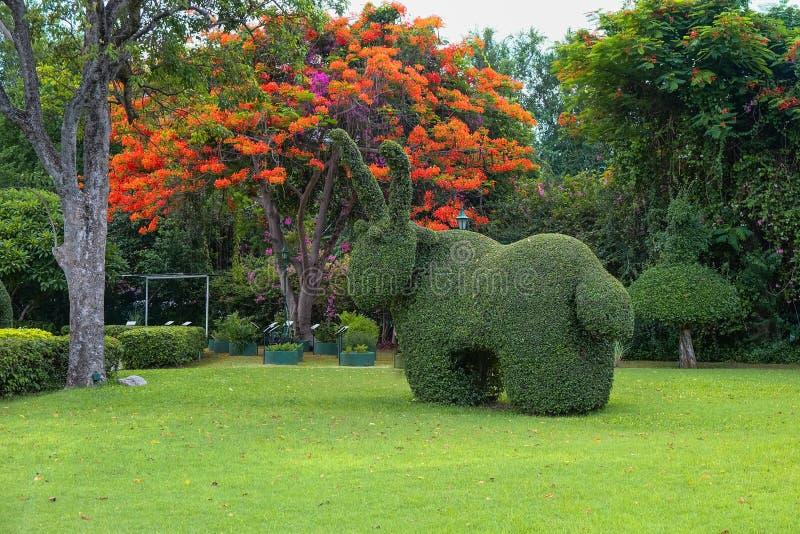 Bella decorazione di arte del giardino sul fondo esotico degli alberi del fiore nel parco fotografia stock libera da diritti