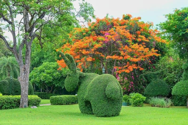 Bella decorazione di arte del giardino sul fondo esotico degli alberi del fiore nel parco immagine stock libera da diritti