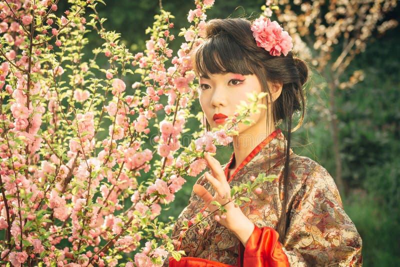 Bella donna asiatica in fiore di sakura fotografia stock
