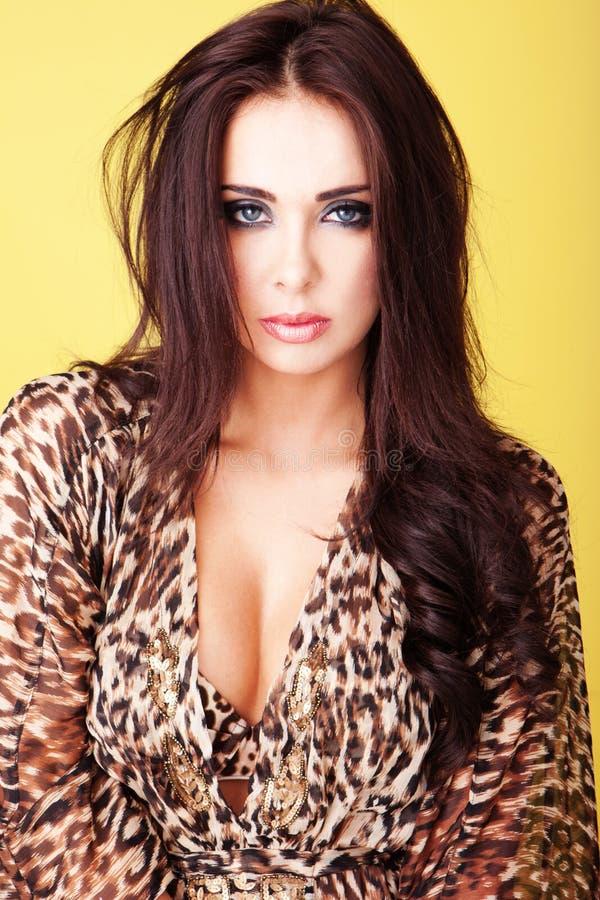 Bella donna busty del brunette immagini stock