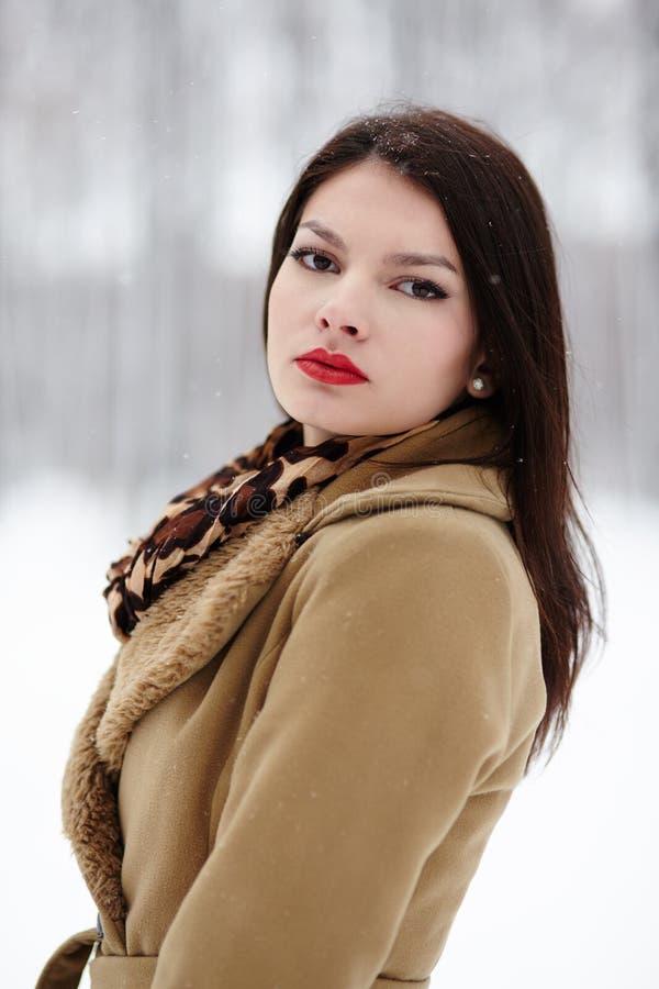 Bella donna che posa nella foresta nell'inverno fotografia stock