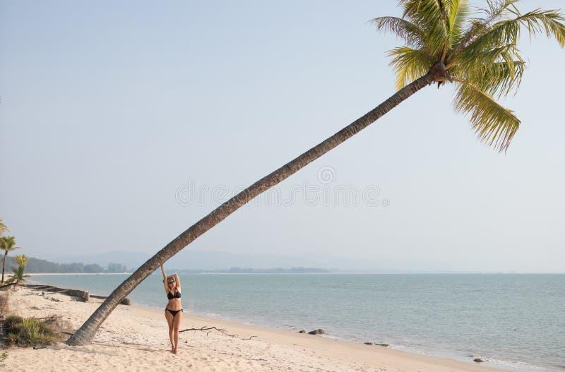 Bella donna che si rilassa sulla palma fotografie stock