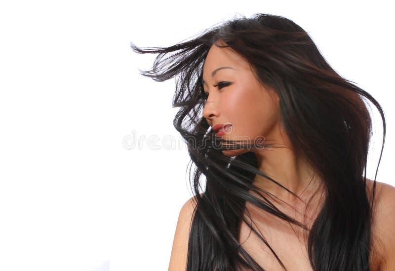 Bella donna con i capelli marroni lunghi di volo. fashi immagini stock