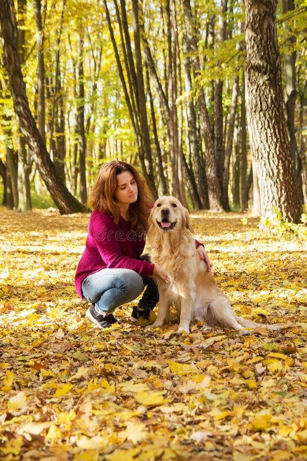 Bella donna con un cane di golden retriever nel parco di autunno immagine stock