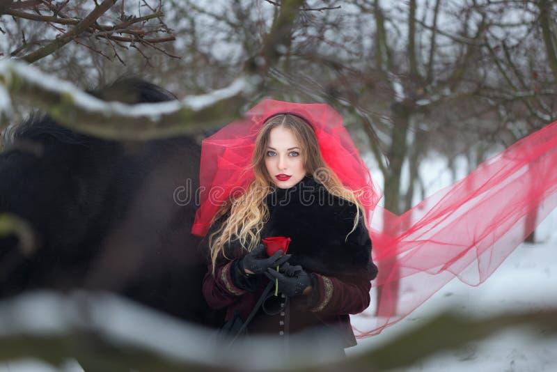 Bella donna con un cavallo nero nell'inverno con una rosa rossa in un velo rosso fotografie stock
