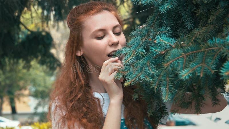 Bella donna dello zenzero sulla dieta che mangia gli aghi del pino fotografia stock
