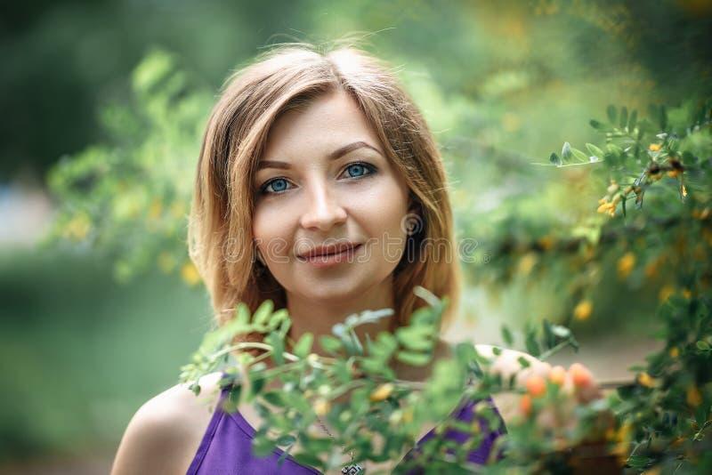 Bella donna europea incinta in vestito viola porpora, stante vicino ai cespugli dell'acacia con i piccoli fiori gialli, colori de fotografia stock libera da diritti