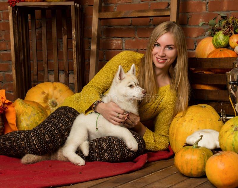 Bella donna felice con il cucciolo del husky con il raccolto di autunno su un fondo del muro di mattoni immagini stock