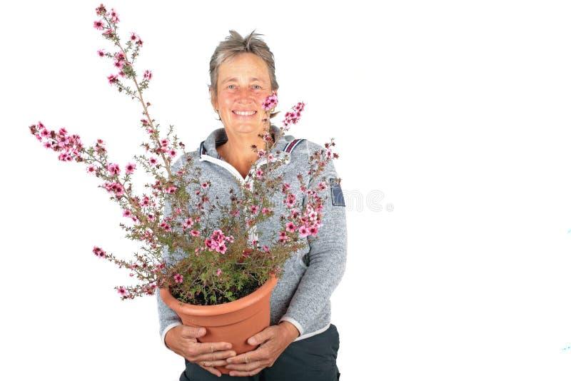 Bella donna matura con una bella pianta sbocciante fotografia stock
