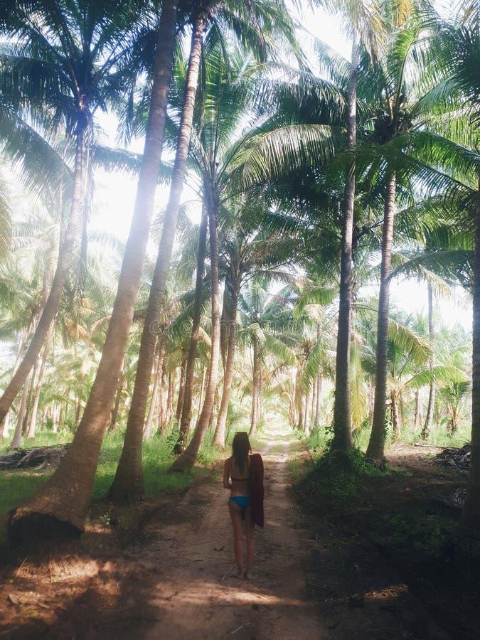 Bella donna nel paradiso tropicale soleggiato della foresta fotografie stock