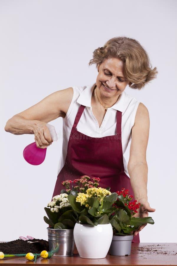 Donna senior con i fiori fotografia stock
