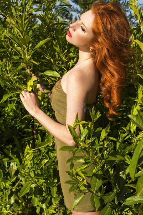 Bella Donna Sexy Con Capelli E Le Lentiggini Rossi ...