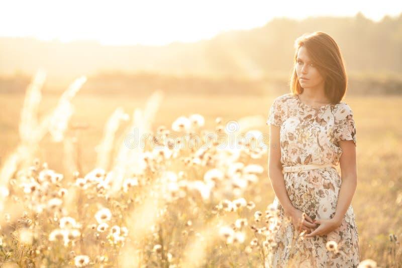Bella donna sexy del brunette all'aperto su un tramonto fotografie stock libere da diritti