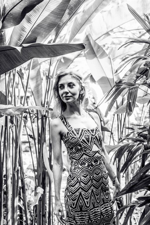 Bella donna snella fra le piante tropicali Bellezza, modo Stazione termale, sanità Vacanza tropicale Isola di Bali fotografia stock