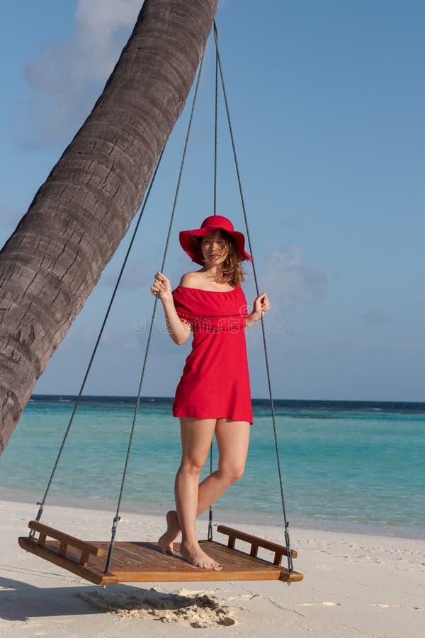 Bella donna su un'oscillazione allegata ad una palma Acqua cristallina delle Maldive come fondo immagini stock