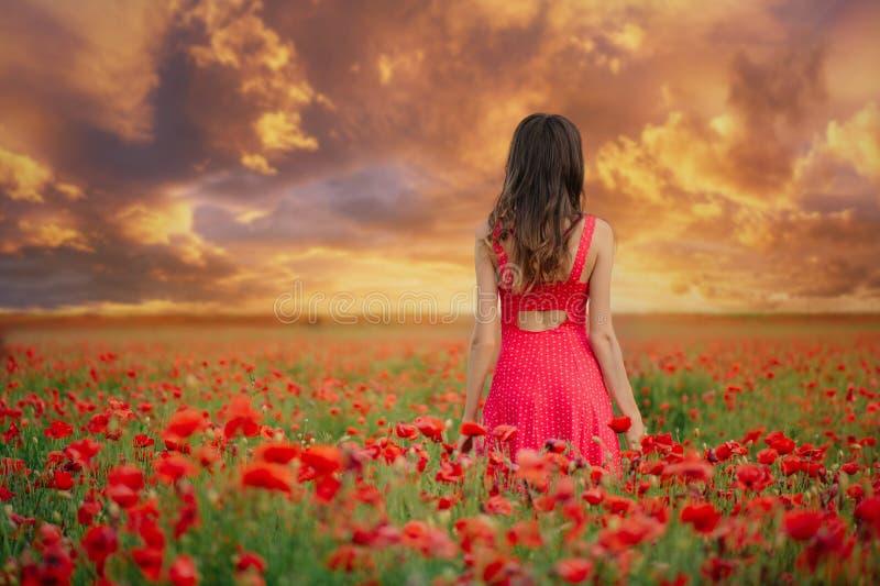Bella donna in un vestito rosso in un campo del papavero al tramonto dalla tonalità posteriore e calda, dalla felicità e da uno s immagine stock libera da diritti